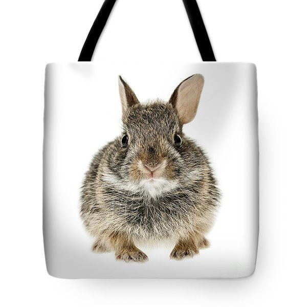 Baby Cottontail Bunny Rabbit Tote Bag