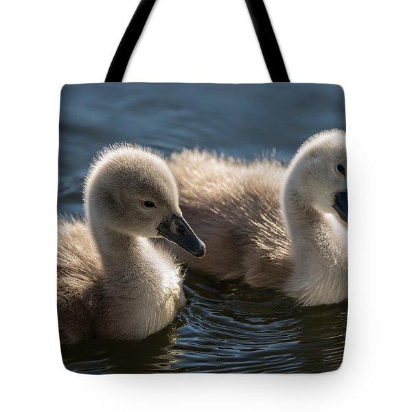 Baby Swans Tote Bag by Michael Mogensen