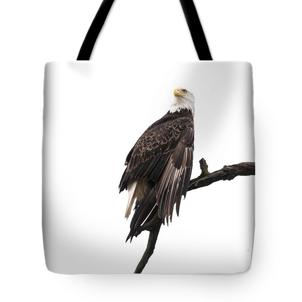 Tote Bag featuring the photograph Bald Eagle 5 by David Lester