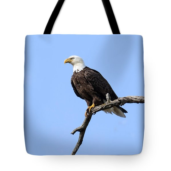 Tote Bag featuring the photograph Bald Eagle 6 by David Lester