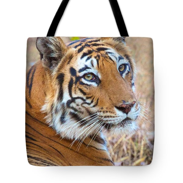 Bandhavgarh Tigeress Tote Bag