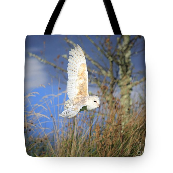 Tote Bag featuring the photograph Barn Owl by Maria Gaellman
