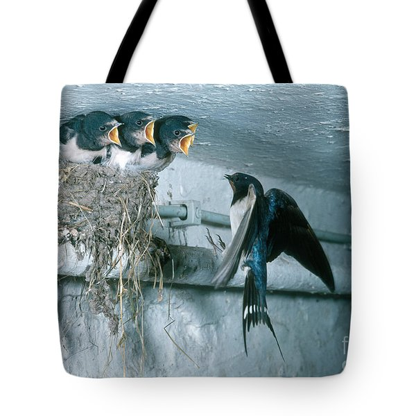 Barn Swallows Tote Bag by Hans Reinhard