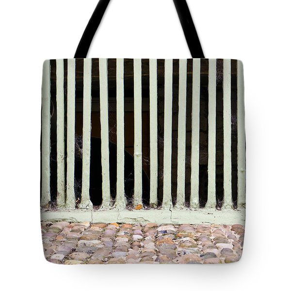 Bars Tote Bag