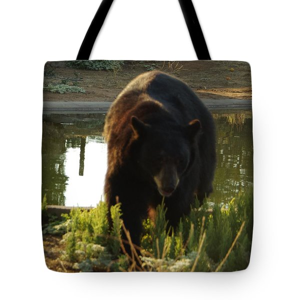Bear 1 Tote Bag