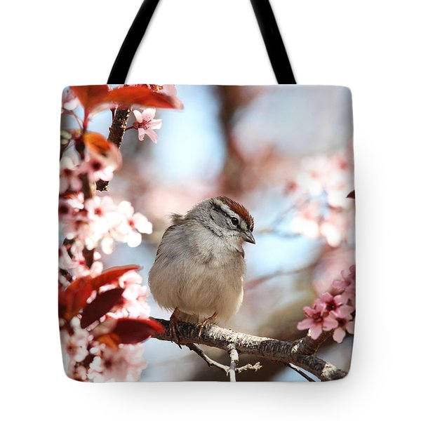 Beautiful Sparrow Tote Bag