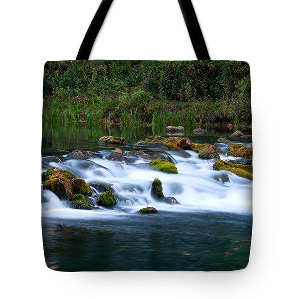 Bennett Spring Tote Bag by Steve Stuller