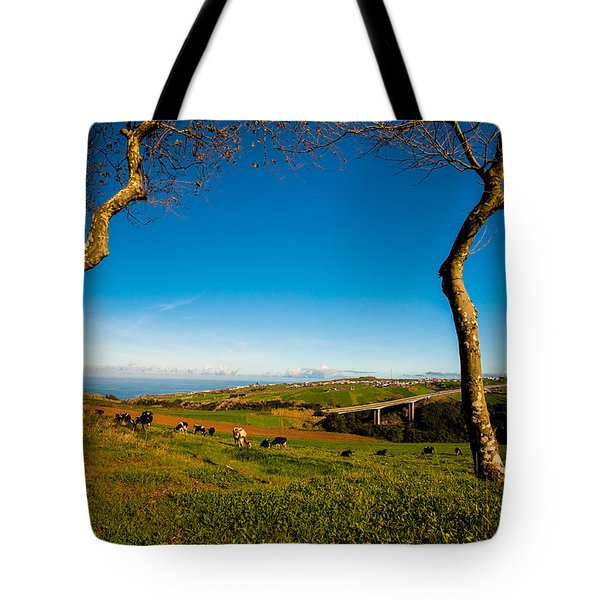 Between Two Trees Tote Bag