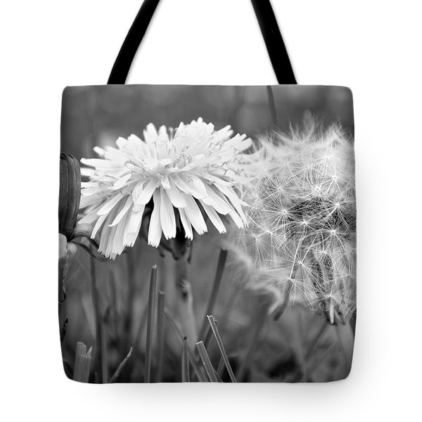 Birth Life Death Tote Bag by Frozen in Time Fine Art Photography