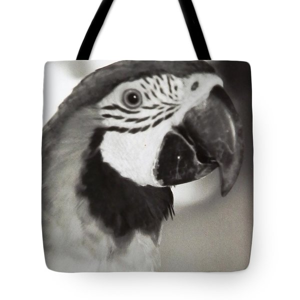 Tote Bag featuring the photograph Black And White Parrot Beauty by Belinda Lee