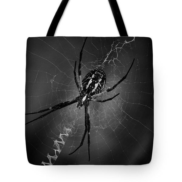 Black And Yellow Argiope Tote Bag