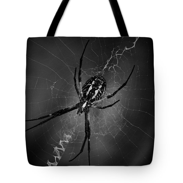 Tote Bag featuring the photograph Black And Yellow Argiope by Ben Shields