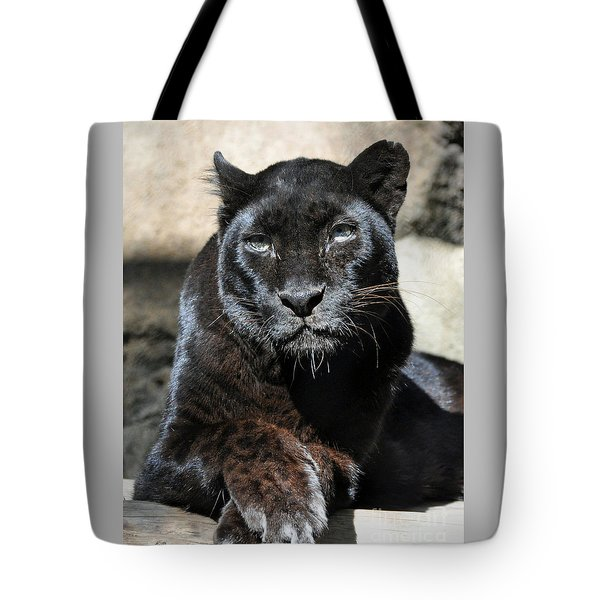 Black Leopard Tote Bag by Savannah Gibbs