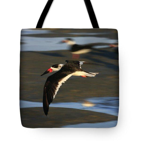 Black Skimmer Beach Tote Bag