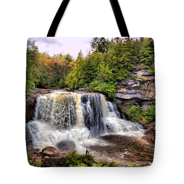 Blackwater Falls Sp Tote Bag