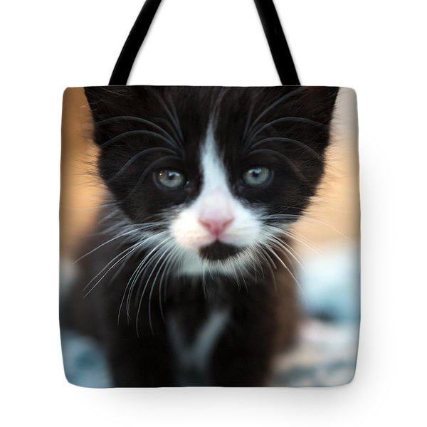 Black And White Kitten Tote Bag