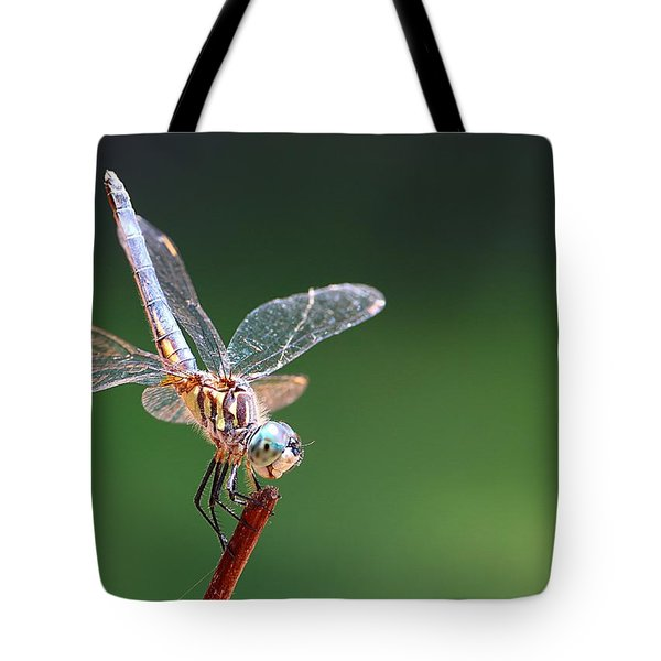 Blue Tailed Dragonfly Tote Bag