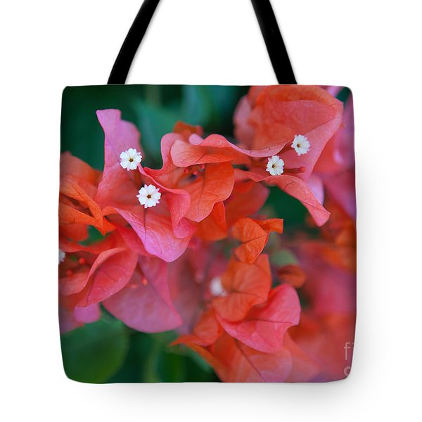 Bougainvillea Tote Bag by Roselynne Broussard