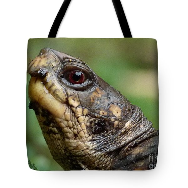 Box Turtle Tote Bag