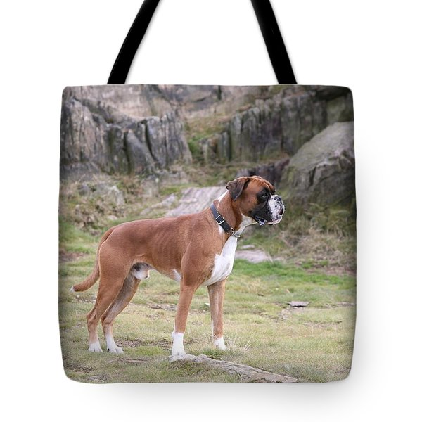 Boxer Dog Tote Bag by Mark Severn