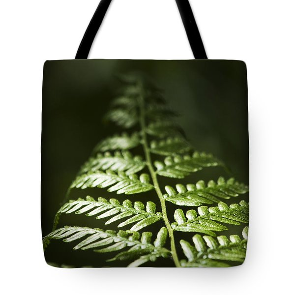 Bracken Fern Tote Bag