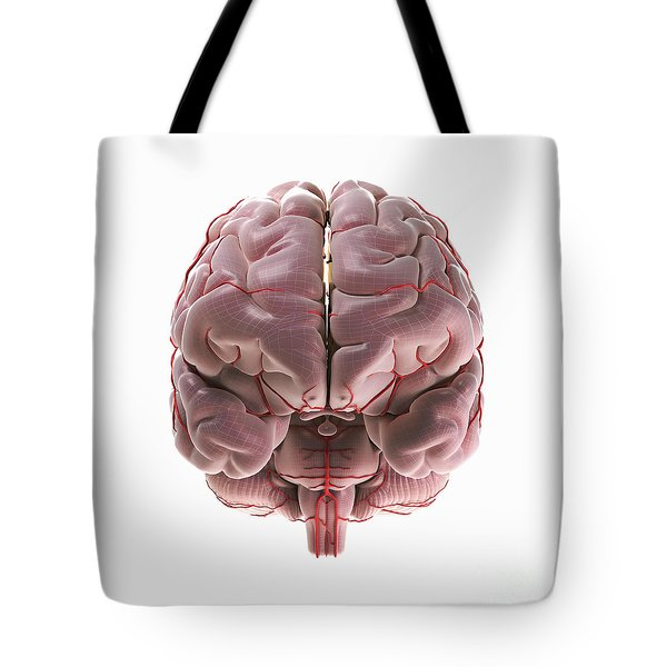 Brain With Blood Supply Tote Bag