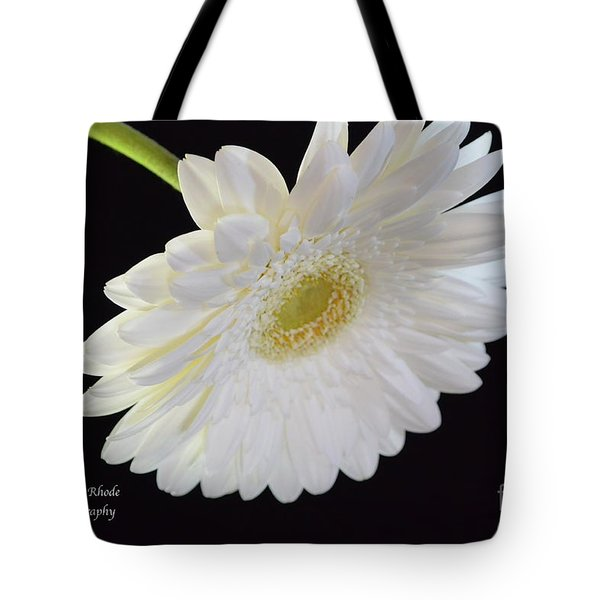 Tote Bag featuring the photograph Bright White Gerber Daisy # 2 by Jeannie Rhode