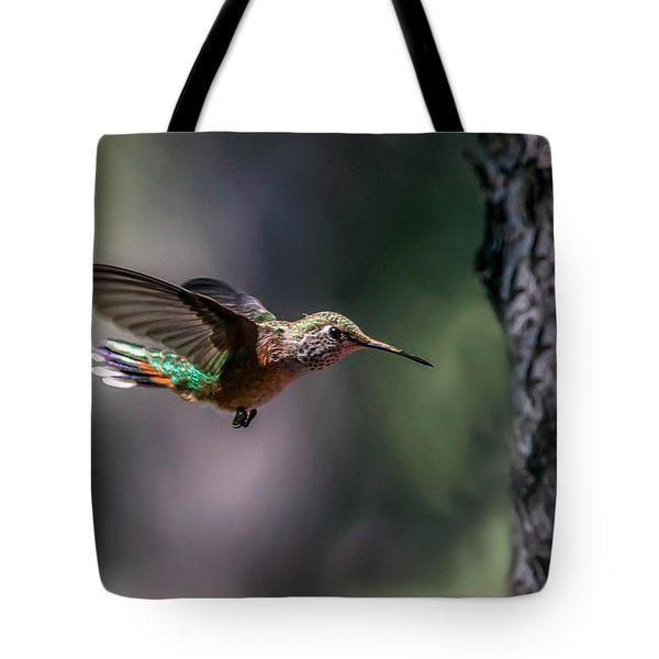 Broad-tailed Hummingbird Tote Bag