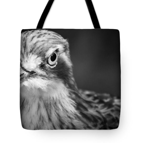 Bush Stone Curlew Tote Bag by Craig Dingle