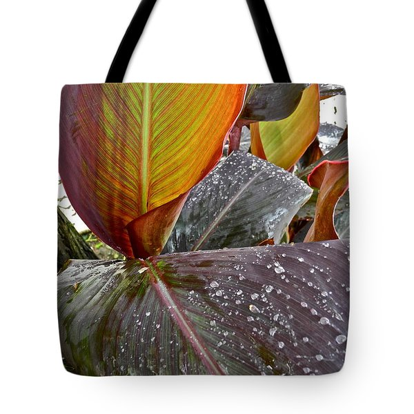 Canna Lily I  Tote Bag by Kirsten Giving