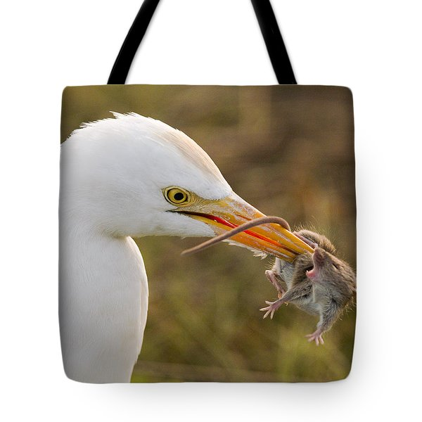 Cattle Egret Tote Bag by Doug Herr
