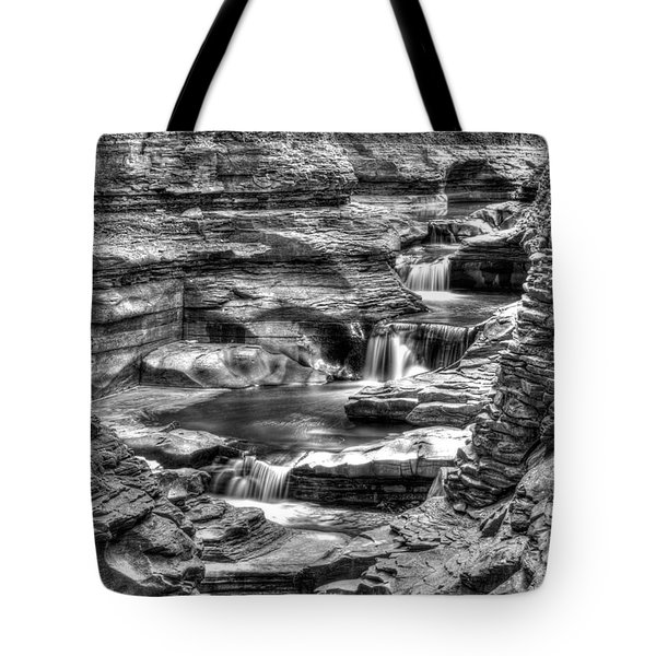 Central Cascade Watkins Glen Tote Bag