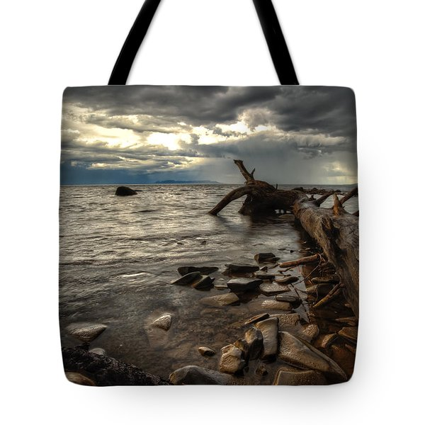 Chippewa  Tote Bag by Jakub Sisak
