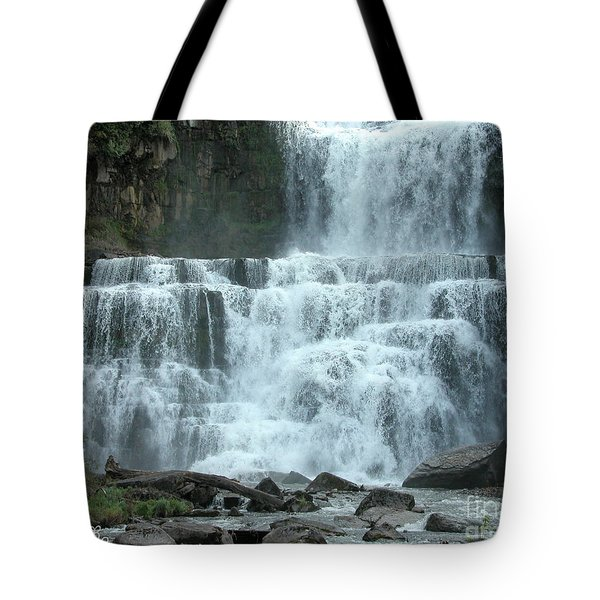 Tote Bag featuring the photograph Chittenango Falls by Mariarosa Rockefeller