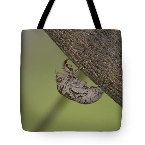 Cicada Tote Bag by Randy Bodkins