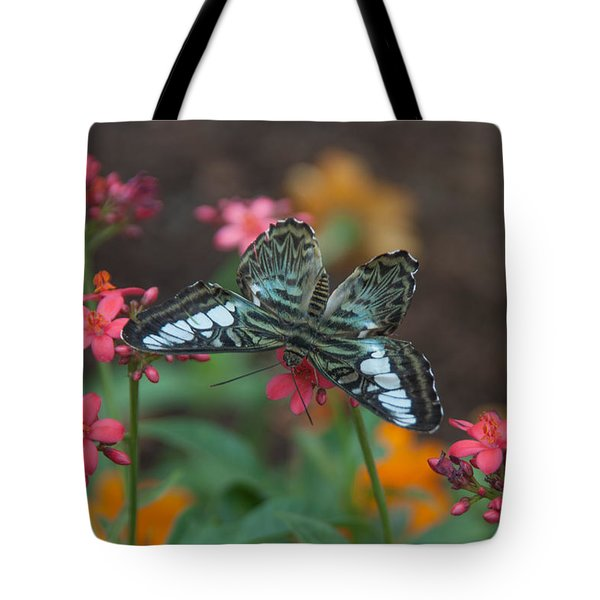 Clipper Butterfly 6150-052513-1cr Tote Bag