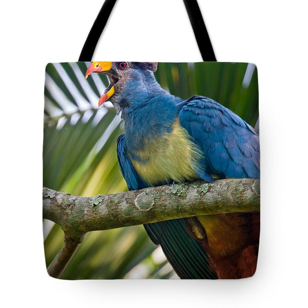 Close-up Of A Great Blue Turaco Tote Bag