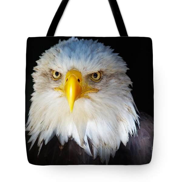 Closeup Portrait Of An American Bald Eagle Tote Bag
