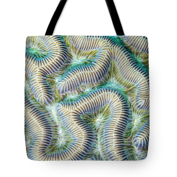 Coral Maze Tote Bag by Jean Noren
