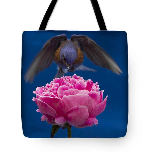 Count Bluebird Tote Bag by Jean Noren