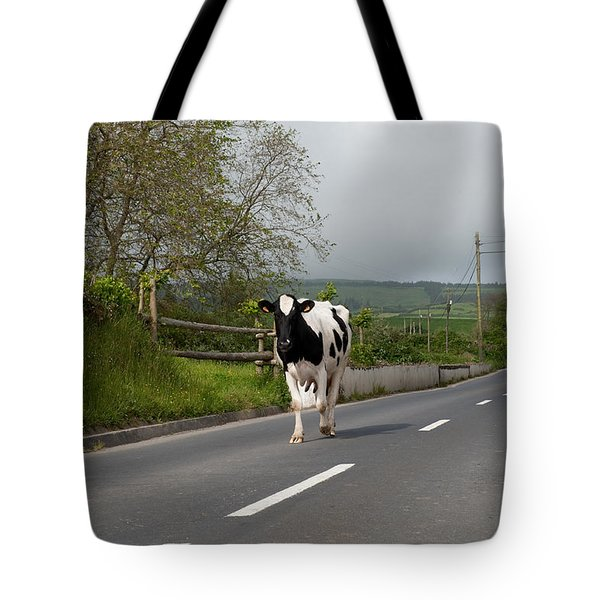 Cow Walks Along Country Road Tote Bag