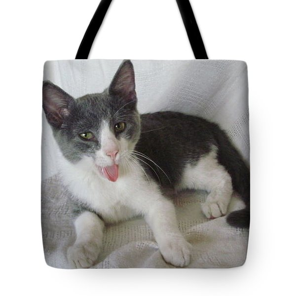 Crazy Cat Tote Bag by Joann Renner