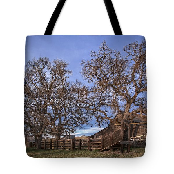Cripple Creek Barn Tote Bag by Tim Bryan