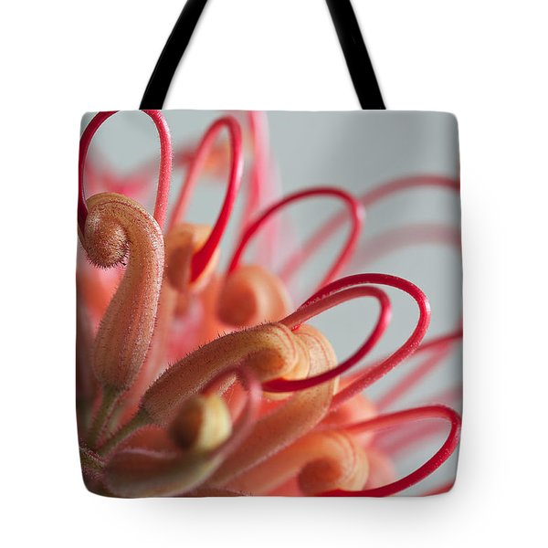 Curves Tote Bag by Shirley Mitchell