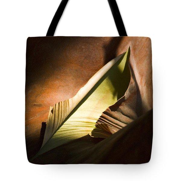 Cycle Of Life Tote Bag