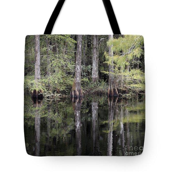 Cypress Reflections Tote Bag