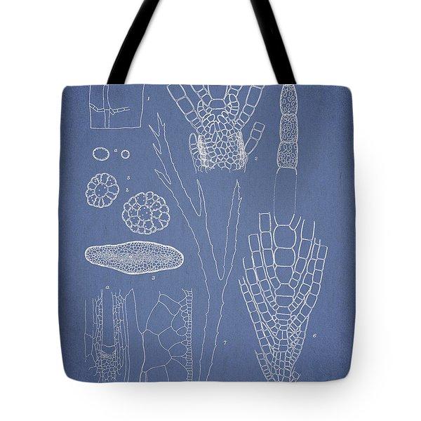 Desmarestia Ligulata Tote Bag by Aged Pixel