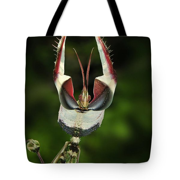 Devils Praying Mantis In Defensive Tote Bag