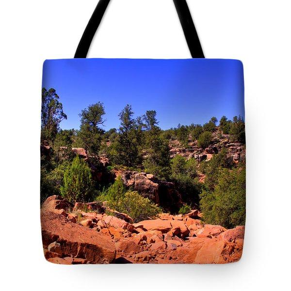 Diamondback Gulch In Sedona Arizona Tote Bag by David Patterson
