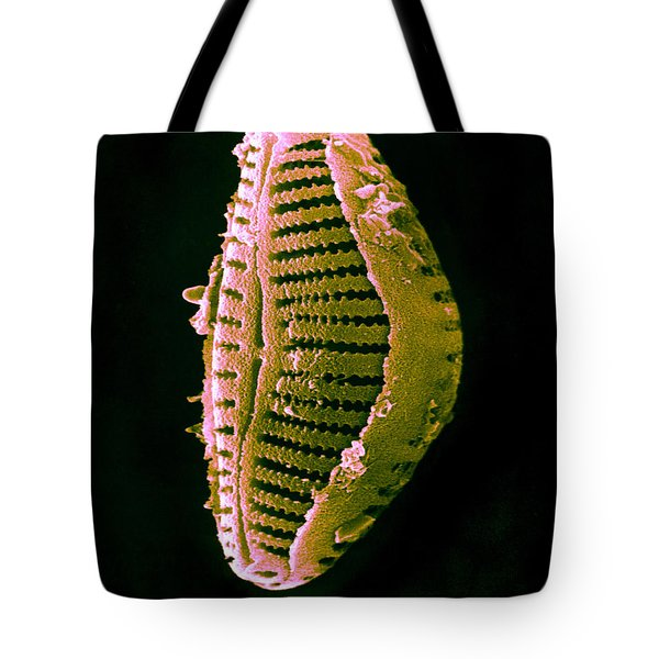 Diatom Tote Bag by David M. Phillips